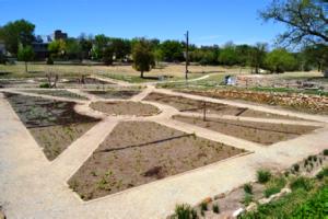 Creative garden layouts