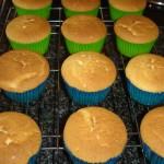 Vanilla Cupcakes - Baked