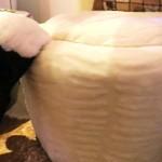 Skapie poufe chair - Nomble