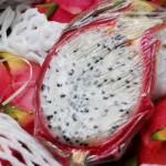 Dragon fruit up close