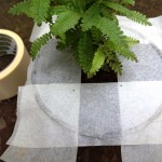 Make sure the tape is securely stuck to the edges of the planter.  Turn it upside down and give the bottom of the pot a knock with your fork or spade.